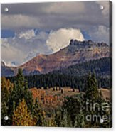Lizard Head Wilderness Acrylic Print