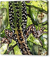 Lizard In Green Nature - Elena Yakubovich Acrylic Print