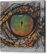 Lizards Eye Acrylic Print