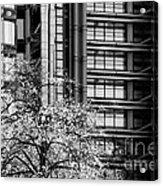 Lloyd's Of London 05 Acrylic Print