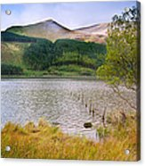 Llyn Cwellyn In Snowdonia National Park Towards M Acrylic Print