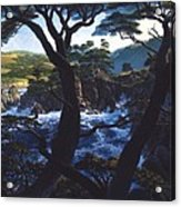 Lobos Symphony Acrylic Print