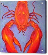 Lobster Acrylic Print by John  Nolan