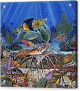 Lobster Sanctuary Re0016 Acrylic Print