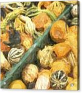Local Glazed Gourds Painterly Effect Acrylic Print