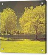 Lodge Lake 2 Acrylic Print