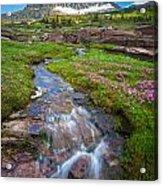 Logan Pass Creek Acrylic Print