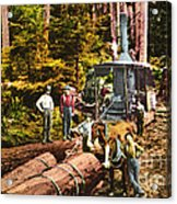 Logging With Steam Donkey Engine Near Olympia Washington Circa 1900 Acrylic Print