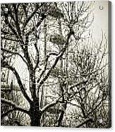 London Eye Through Snowy Trees Acrylic Print