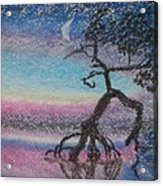 Lone Dancer By Moonlight  Acrylic Print