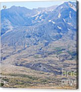 Lone Evergreen - Mount St. Helens 2012 Acrylic Print