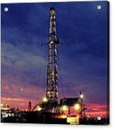 Lone Giant With Blue Sky Acrylic Print