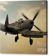 Lone Spitfire Acrylic Print