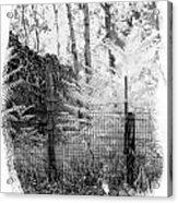 Lone Stone Wall Acrylic Print
