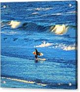Lone Surfer 1 Acrylic Print