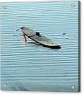 Lonely Board Acrylic Print
