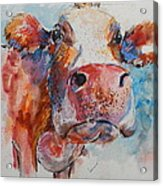 Lonely Cow Acrylic Print