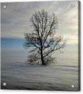 Lonely Prairie Acrylic Print