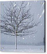 Lonely Tree In Snow Bavaria Acrylic Print