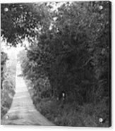 Lonesome Road Acrylic Print