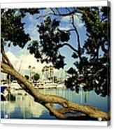 Long Beach Marina Acrylic Print