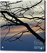 Long Branch Acrylic Print