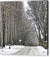 Long Country Road Acrylic Print