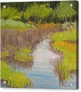 Long Creek Marsh Acrylic Print