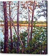 Long Lake Acrylic Print
