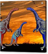 Long Necked Long Tailed Family Of Dinosaurs At Sunset Acrylic Print