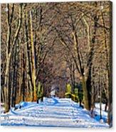 Long Path Ahead Acrylic Print