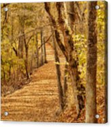 Long Road Acrylic Print
