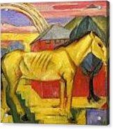 Long Yellow Horse 1913 Acrylic Print