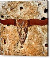 Longhorn On The Rock Acrylic Print
