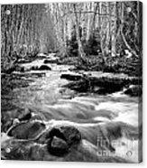 Longmire Stream 5bw Acrylic Print