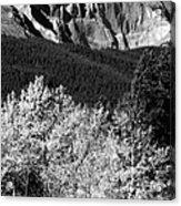 Longs Peak 14256 Ft Acrylic Print