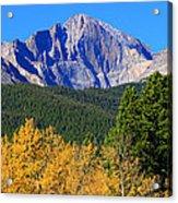 Longs Peak Autumn Aspen Landscape View Acrylic Print