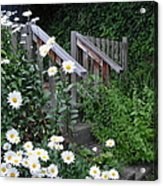 Look After The Daisies Acrylic Print