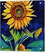 Midnight Sunflower Acrylic Print