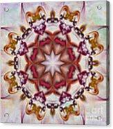 Look Into The Center Acrylic Print