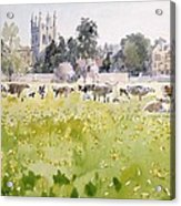 Looking Across Christ Church Meadows Acrylic Print
