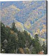 Looking Down On Autumn From The Top Of Smoky Mountains Acrylic Print