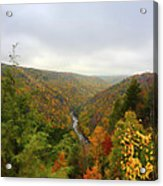 Looking Downstream At Blackwater River Gorge In Fall Acrylic Print by Dan Friend