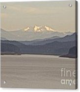 Looking For Diamond  Acrylic Print by Tim Rice