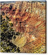 Looking Into The South Rim Acrylic Print