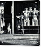 Looking Out The Shoppe Acrylic Print