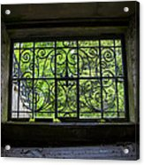 Looking Through Old Basement Window On To Vibrant Green Foliage Fine Art Photography Print  Acrylic Print
