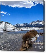 Looking Up The Salmon River Acrylic Print