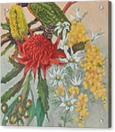 Lorikeet And Wildflowers Acrylic Print
