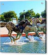 Los Colinas Mustangs 14698 Acrylic Print